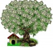 geld-_money_tree