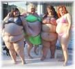 obese-nederland