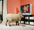 tv_sheep