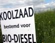 Bio-diesel-koolzaad