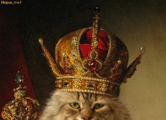 kat met kroon en scepter