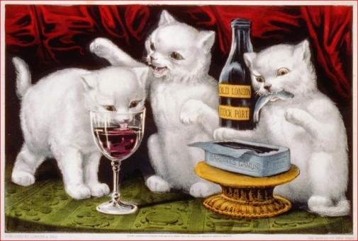 3 katten