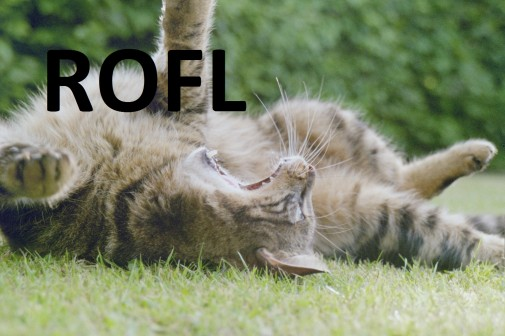 rofl1