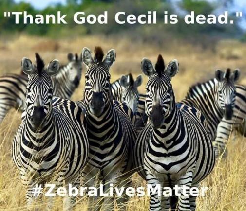 zebra_lives_matter