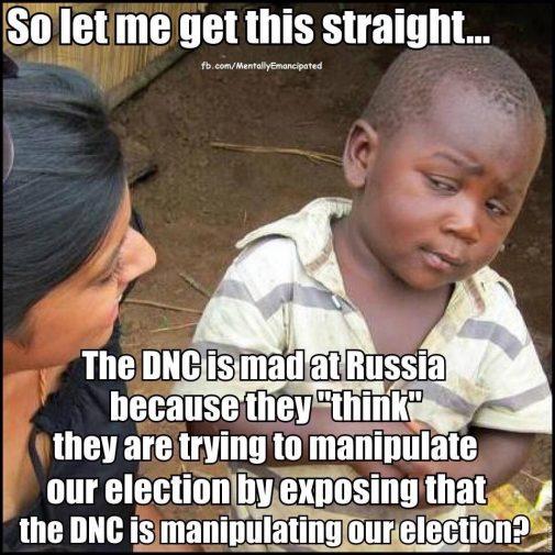 manipulat_elections
