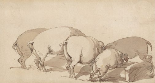 Thomas_Rowlandson_-_Pigs_at_a_Trough_-_Google_Art_Project