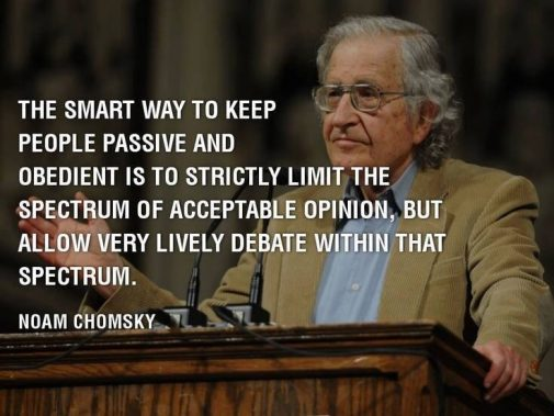 lively_debat_small_spectrum_Chomsky